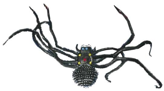 Photo du produit Araignée noire géante Halloween