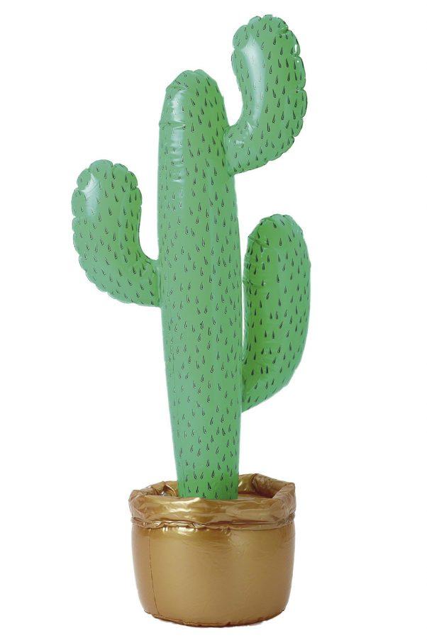 Photo du produit Cactus gonflable