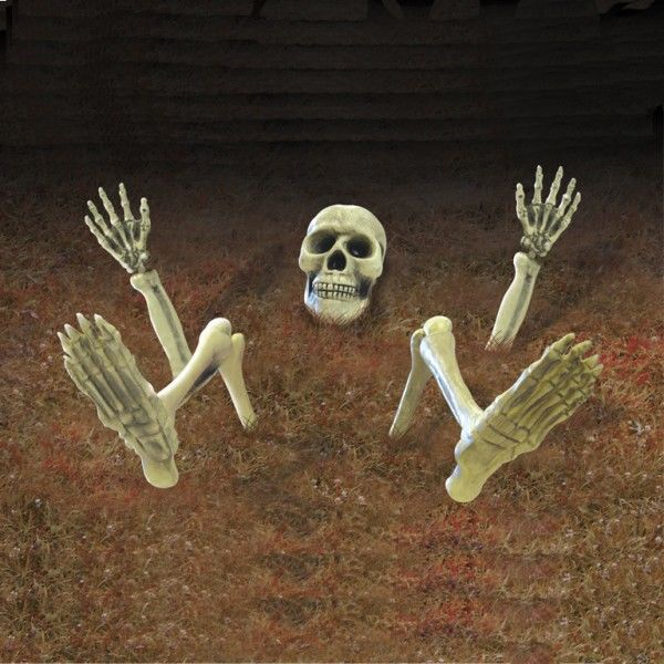 Photo du produit Décoration squelette