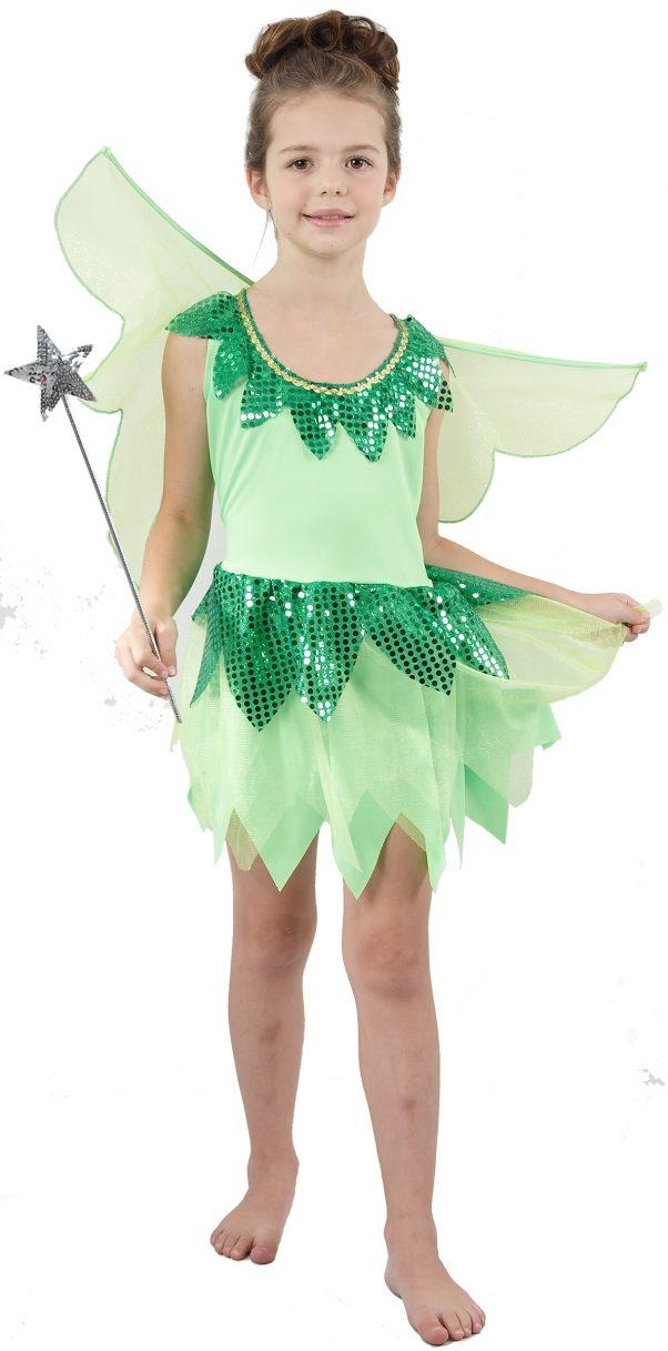 Photo du produit Déguisement fée verte voilage fille