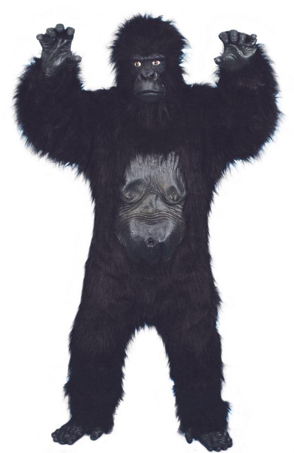 Photo du produit Déguisement gorille homme