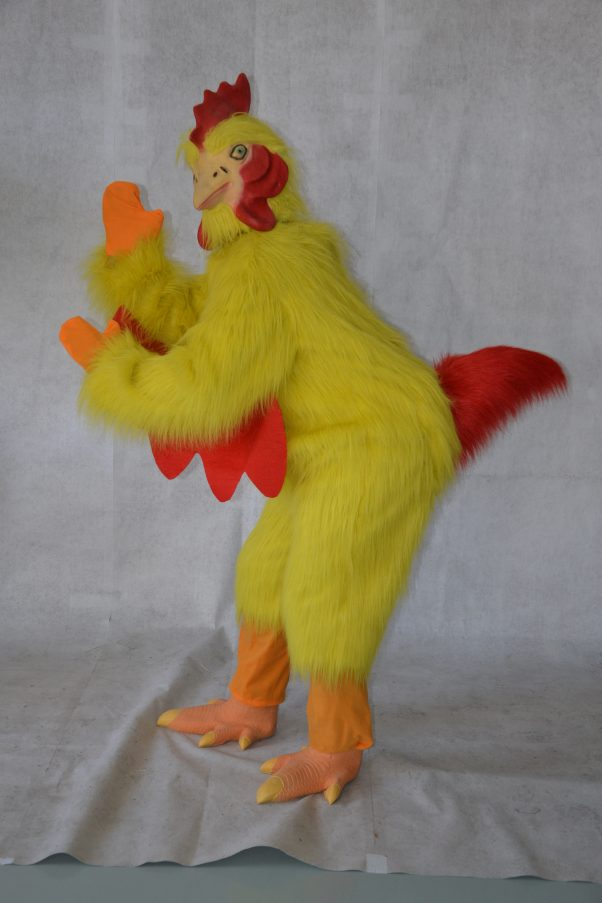 Photo du produit Déguisement poulet adulte