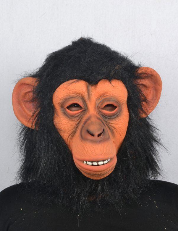Photo du produit Masque de singe adulte