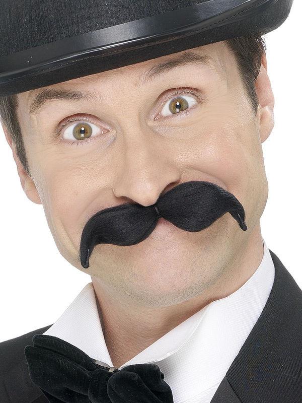 Photo du produit Moustache modelable adulte