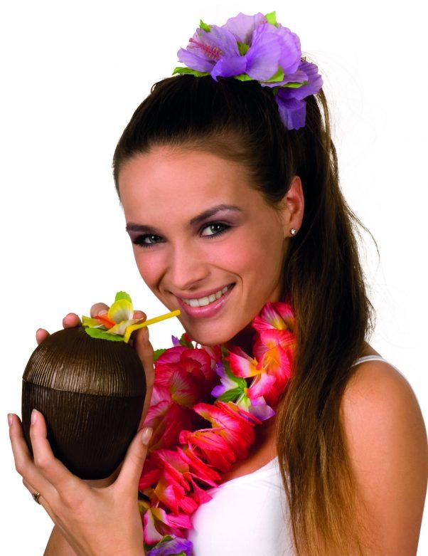 Photo du produit Noix de coco Hawaï