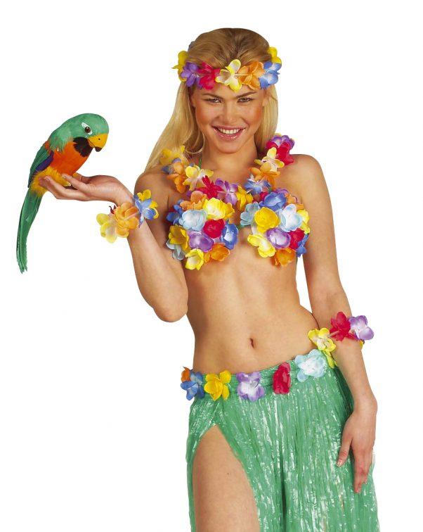 Photo du produit Perroquet des îles Hawaï 40 cm