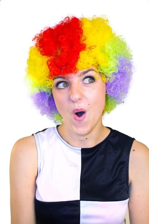 Photo du produit Perruque afro/ clown multicolore standard adulte