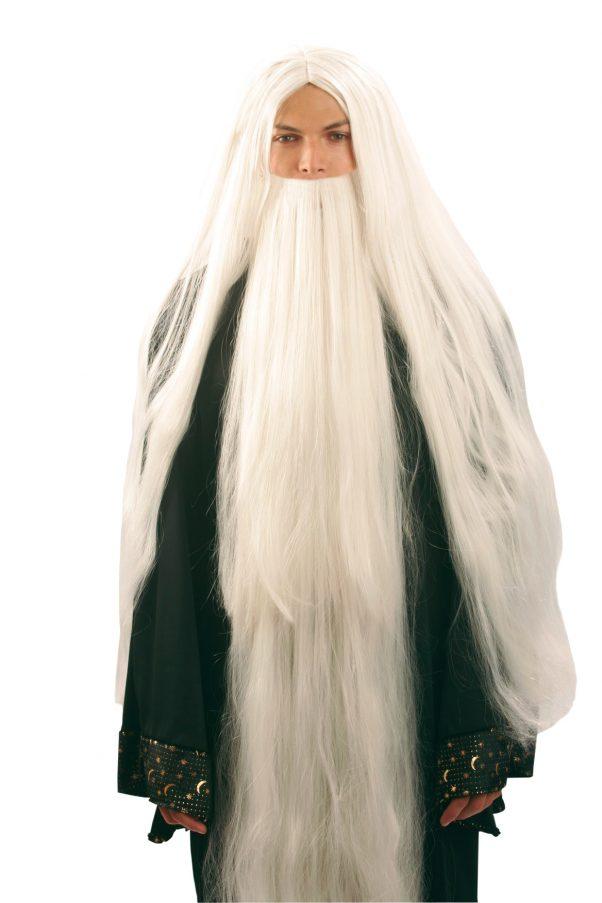 Photo du produit Perruque et barbe de magicien homme