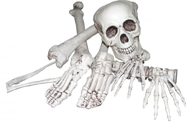 Photo du produit Sac d'os 8 pièces Halloween