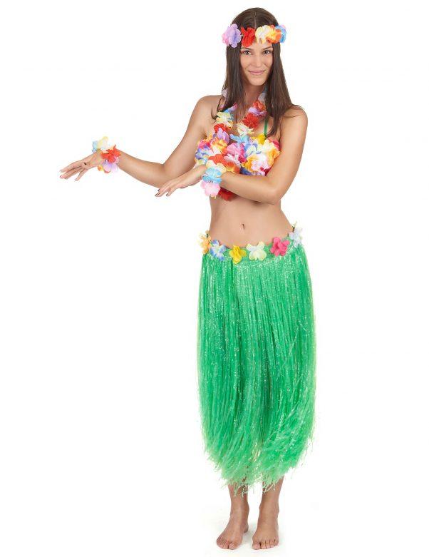Photo du produit Set Hawaï vert adulte